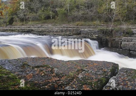 Ansicht-Fluss fließt über Kalkstein Felsen Aysgarth fällt River Ure Aysgarth Wensleydale Yorkshire Dales N.P North - Stockfoto
