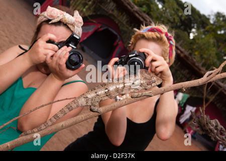 Madagaskar, Betrieb Wallacea, Mariarano, Studenten fotografieren Oustalet Chamäleon Stockfoto