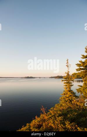 Blick auf den See mit Bäumen bei Sonnenuntergang auf See in den Wäldern; Kenora, Ontario Kanada - Stockfoto