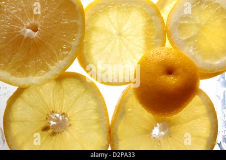 In Scheiben geschnittene Grapefruit - Stockfoto