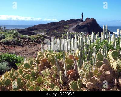 Punta de Teno, Teneriffas westlichsten Punkt. - Stockfoto