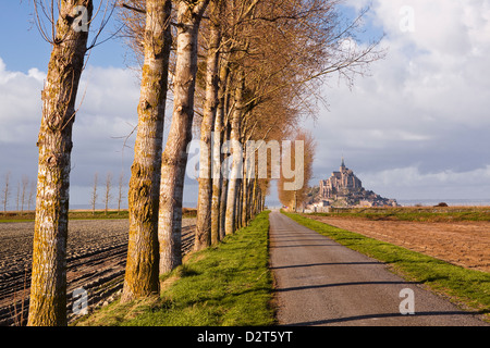 Einer von Bäumen gesäumten Allee führt in Richtung Mont Saint Michel, UNESCO-Weltkulturerbe, Normandie, Frankreich - Stockfoto