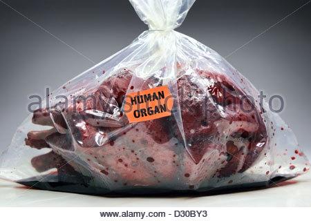 Menschenherz mit Preisschild, Organspende Stockfoto, Bild: 76303795 ...