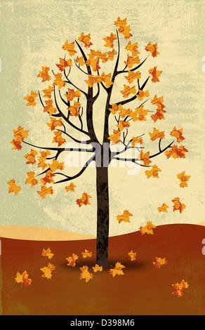 Anschauliches Bild von Ahornbäume im Herbst, die stellvertretend für das Konzept der Rezession - Stockfoto