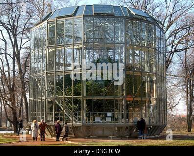 (Dpa) - ein mobiles Gewächshaus schützt eine 8,6 m hohe Kamelie (Camellia Japonica), eine von Europas ältesten Kamelien, - Stockfoto