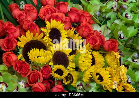Blume-Anzeige von Sonnenblumen, Rosen und Orchideen. - Stockfoto