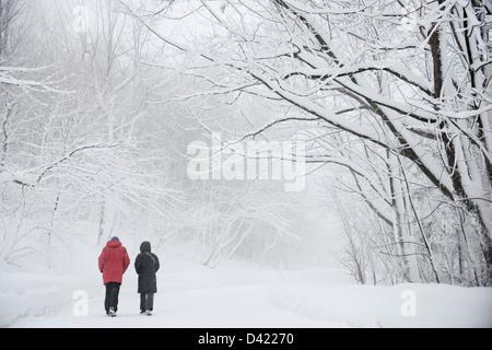 Paare, die im Nebel im Schnee bedeckt Mont Royal Park im Winter, Parc du Mont-Royal, Montreal, Quebec, Kanada - Stockfoto