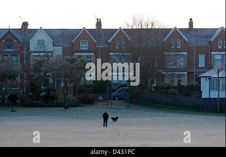 Swansea, Wales, Großbritannien. Sonntag, 3. März 2013. Ein Mann geht seinen Hund auf den Frost überdachte Spielplätze im Underhill Park in Mumbles in der Nähe von Swansea früh an diesem Morgen nach einer Erkältung in den Tag starten. Bildnachweis: Phil Rees / Alamy Live News Stockfoto