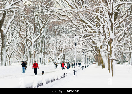 Central Park nach einem Schneesturm in der Nähe von The Mall, New York City. - Stockfoto