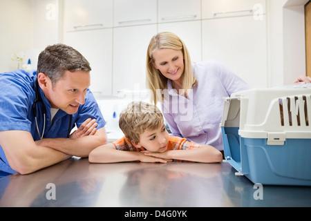 Tierarzt untersuchen Tier in der Kiste in der Tierarzt Chirurgie - Stockfoto