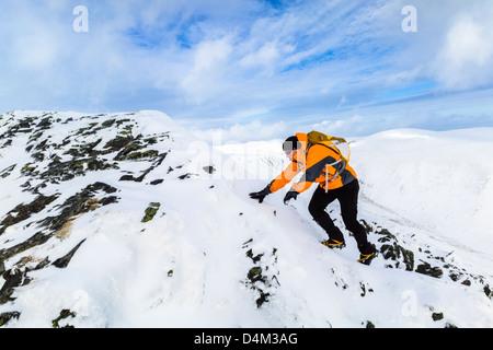 Ein Bergsteiger aufsteigend scharfe Kante zum Gipfel des blencathgra (saddleback) im Lake District. - Stockfoto