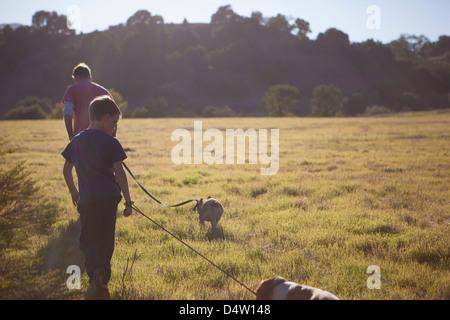 Vater und Sohn gehen Hunde im Feld - Stockfoto