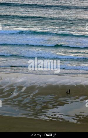 Ein paar nehmen ihren Hund für einen Spaziergang am Strand entlang, als die Sonne untergeht in Cornwall, Großbritannien. - Stockfoto