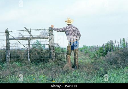 Ein Cowboy in West-Texas lehnt sich an einen Stacheldrahtzaun im Deckgestein Land. - Stockfoto