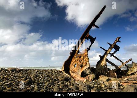 Schiffbruch auf felsigen Küste. New Plymouth, Nordinsel, Neuseeland. - Stockfoto