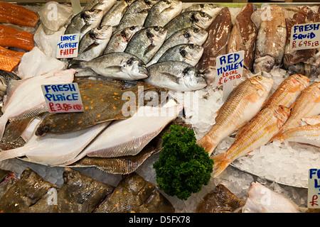 Frischer Fisch auf Verkauf in Fischhändler, Markthalle, St. Helier, Jersey, Kanalinseln, Großbritannien - Stockfoto