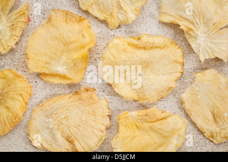 Getrocknete Scheiben Yacon Knolle auf Grunge weiß lackiertem Holz. - Stockfoto