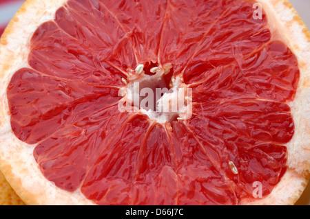 Nahaufnahme von Bio Grapefruit zeigt Segmente - Stockfoto