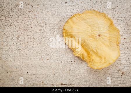 Ein Stück getrocknete Yacon Knolle auf Grunge weiß lackiertem Holz mit Textfreiraum. - Stockfoto