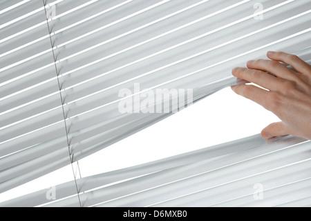 Weibliche Hand trennen Lamellen der Jalousien zu durchschauen. - Stockfoto