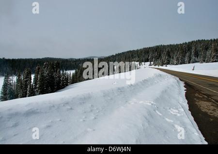 Weg durch den Schnee bedeckt Landschaft, Grand Mesa-Nationalpark, Colorado, USA - Stockfoto