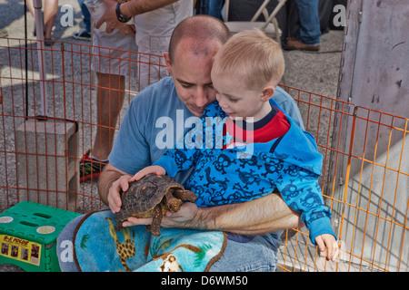 """Vater mit Sohn """"Rot Fuß Schildkröte"""" im Streichelzoo genießen. - Stockfoto"""