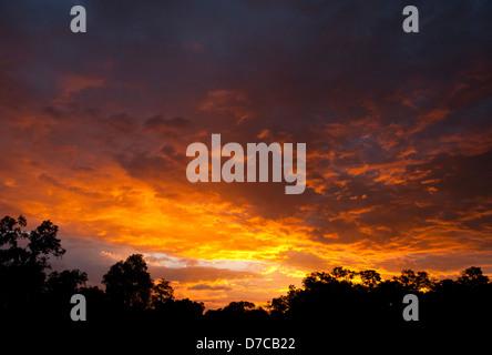Feuriges Orange Sonnenuntergang über die Masai Mara, Kenia, Ostafrika. - Stockfoto