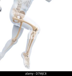 Läuft Skelett, Kunstwerk - Stockfoto