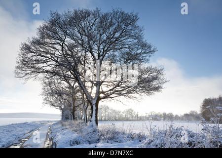 Eine Landstraße führt durch ein Schnee bedeckt Landschaft - Stockfoto