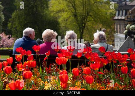 Harrogate, North Yorkshire, UK, 16. Mai 2013. Vier sitzen Rentner, setzte sich auf eine Bank, genoss die mini Hitzewelle - Stockfoto