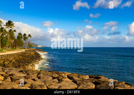 Ufermauer und Palmen Bäume entlang am Kaka'ako zur goldenen Stunde vom Pazifischen Ozean außerhalb von Honolulu, - Stockfoto