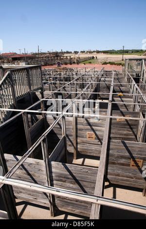 Ein Blick auf die Cowtown Cattlepen Labyrinth in Forth Worth, Texas - Stockfoto