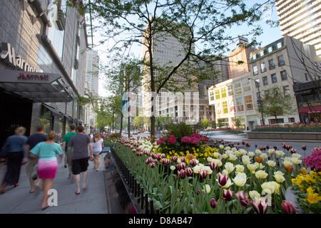 Ansicht der Prachtmeile Michigan Avenue Chicago während Frühling Tulpe Saison zu Fuß einkaufen im Frühjahr-Sommer - Stockfoto