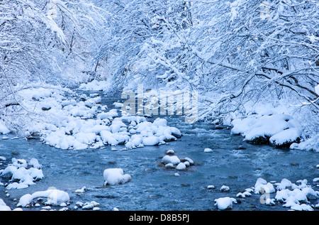Winter-Szene in den Alpen - Stockfoto