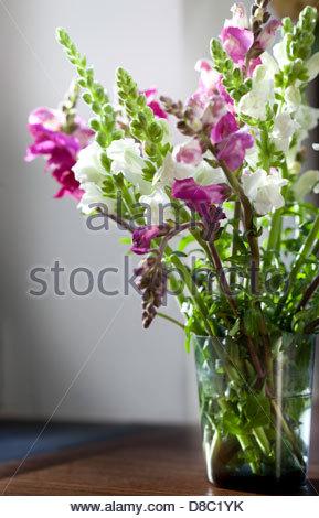 Nahaufnahme einer Vase Mauerblümchen und gilliflowers - Stockfoto