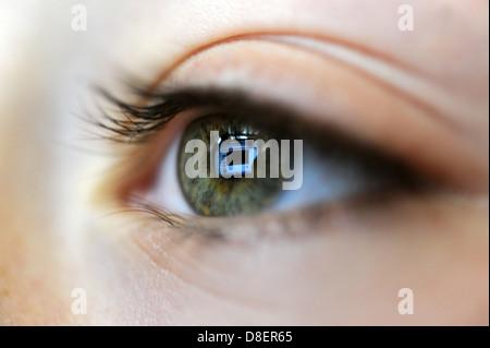 Reflexion von einem Laptop-Computer-Bildschirm in einem 8 Jahre alten Jungen Auge. - Stockfoto