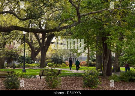 Telfair Square, nördliche Altstadt, Savannah, Georgia - Stockfoto