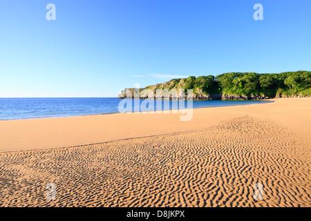 Barafundle Bay Pembroke Pembrokeshire Wales - Stockfoto