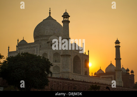 Taj Mahal Blick auf den Sonnenuntergang am Ufer des Flusses Yamuna - Stockfoto