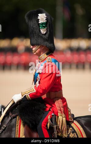 Westminster, London, UK. 8. Juni 2013.  Die Farbe des 1. Bataillons Welsh Guards ist in Anwesenheit von HRH The Prince Of Wales, gesehen hier marschierten. Es gibt mehr als 200 Pferde auf Parade, und mehr als 400 Musiker aus allen den Haushalt Division Bands & Korps der Trommeln.  Bildnachweis: Malcolm Park/Alamy Live-Nachrichten