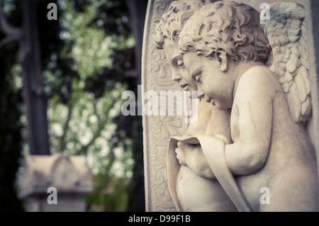 Putten auf einem Grabstein auf dem englischen Friedhof, Florenz, Italien - Stockfoto
