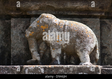 Asien, Indien, Karnataka, Sravanabelagola, Chandragiri Hill, Stein, Schnitzerei, Elefant - Stockfoto