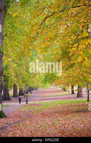 Fuß in eine herbstliche Hyde Park, London, England, UK - Stockfoto