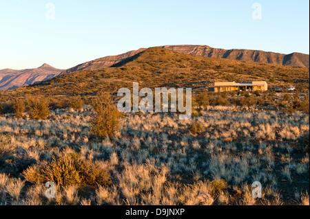 Karoo Vegetation und Lodge, Prinz Albert, Western Cape, Südafrika - Stockfoto