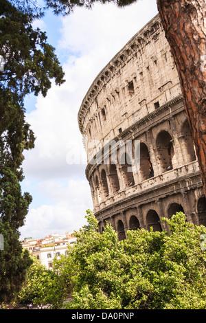 Ein Abschnitt des Kolosseums durch die Bäume in Rom gesehen. - Stockfoto