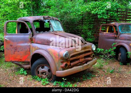 Florida Crawfordville verrostet antike Lkw Fahrzeuge - Stockfoto