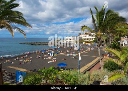 Teneriffa, Teneriffa, Kanaren, Kanarische Inseln, Spanien, Spanisch, Europa, Playa Arena, Puerto de Santiago, Palm - Stockfoto