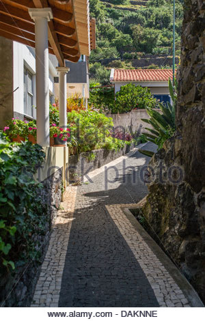 Calcada Pfad im Jardim Do Mar, Madeira Stockfoto