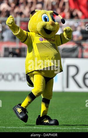 Dortmunder Maskottchen geht Emma über das Spielfeld während der Bundesliga-Fußballspiel zwischen Borussia Dortmund - Stockfoto