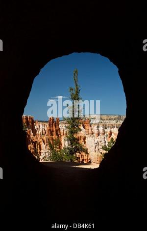 Blick durch einen Tunnel auf der Peekaboo Loop Trail in Bryce Canyon National Park in Utah. - Stockfoto